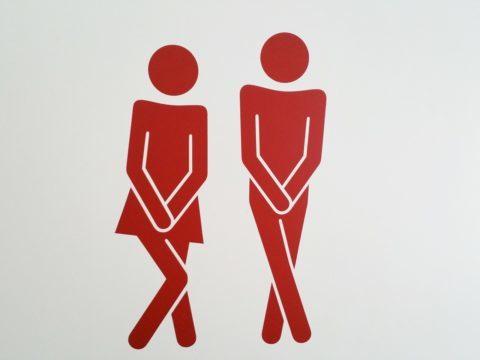 防災用の簡易トイレは100均で買える